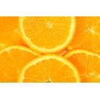 【グリーンティー&レモングラス】フレグランスデュフューザー詰め替えカートリッジ (1105) セントエアー社芳香剤/ユニリースフレグランス(正規代理店)