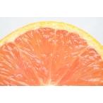 【ピンクグレープフルーツ】フレグランスデュフューザー詰め替えカートリッジ (1646) セントエアー社芳香剤/ユニリースフレグランス(正規代理店)